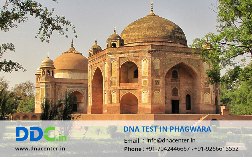 DNA Test in Phagwara